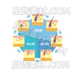 毛周期デザイン「ブルー」(形式PNG/サイズ640*640)