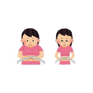 女性向けダイエット「スムージーランキング」記事テンプレート(ブログ・ペラサイト兼用/2000文字)
