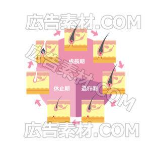 毛周期デザイン「ピンク」(形式PNG/サイズ640*640)