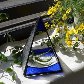トライアングルテラリューム(ブルー)