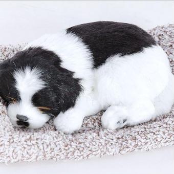 Dream Pets バーニーズマウンテンドッグ 活性炭入り脱臭効果  国内未発売