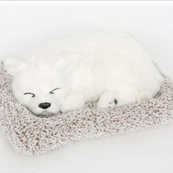 Dream Pets サモエド 活性炭入り 脱臭効果 国内未発売