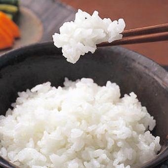 業務用 【激安】 複数原料米 白米5kg