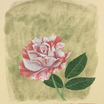 「バラの魅力」色紙にテンペラ画