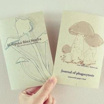 nemunoki:きのこポストカード