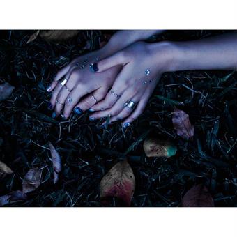 腐海を眠る 錫ring