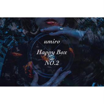 umiro Happy Box NO.2