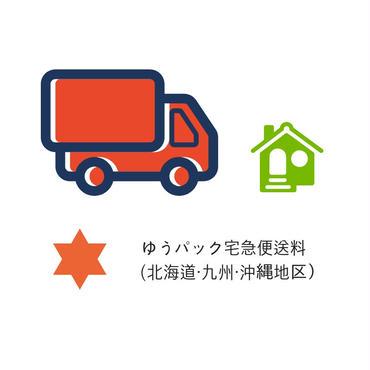 ゆうパック料金(北海道・九州・沖縄地区)