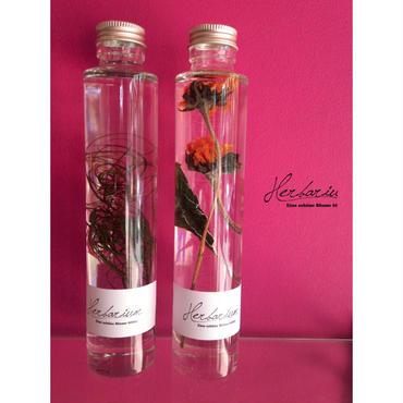 Herbarium(ハーバリウム)花の標本2本セット・ヒマワリ×コアナグロー(BOX付)