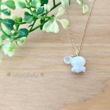 白すずらんのネックレス no.1(white shell & prehnite)