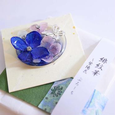 緋紋華/ひもんか 紫陽花~ぶろーち~
