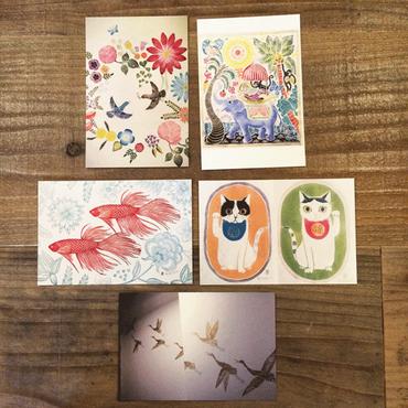 津久井智子 作品ポストカード5枚Set