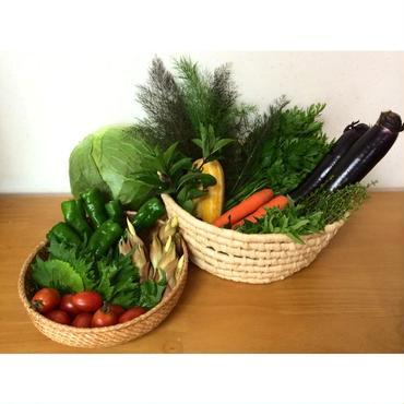 お野菜BOX(定期4回分)