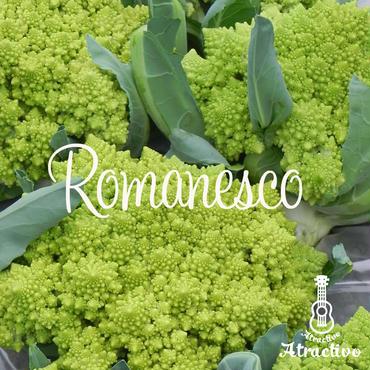 オシャレなブロッコリー「ロマネスコ」の種