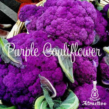 紫カリフラワーの種