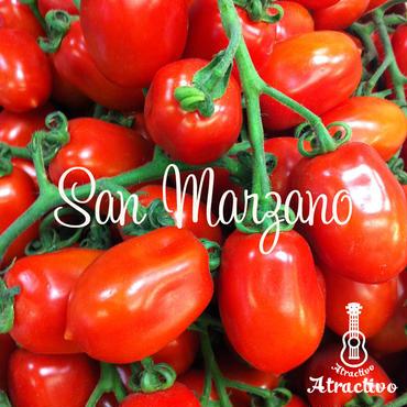 ソースに最適イタリアントマト・サンマルツァーノ