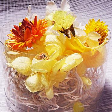 【おまかせイエロー系】ハーバリウム花材セット