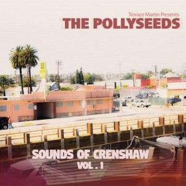 TERRACE MARTIN PRESENTS THE POLLYSEEDS / SOUNDS OF CRENSHAW VOL.1