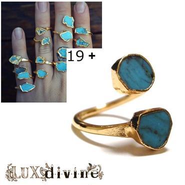 LuxDivine ラックスディバイン アメリカ 一点もの 指輪 19+ ターコイズ リング トルコ石 天然石 ファッション お洒落 誕生石 贈り物 素敵 海外 ブランド