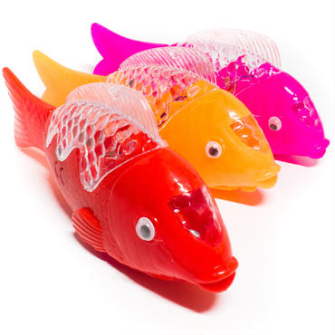 濁った目をしているが活きのいい鯉