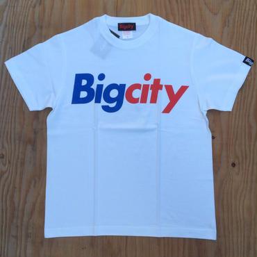 BIGCITY LOGO S/STEE