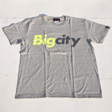 95マックスカラー ラスト1 BigcityLOGOS/STEE