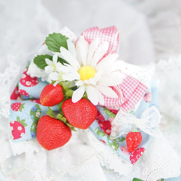 DAISY Strawberry  Ribbon
