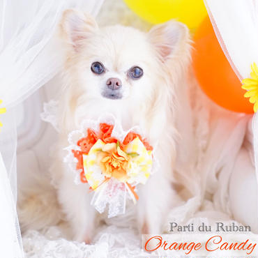 Orange  Candy