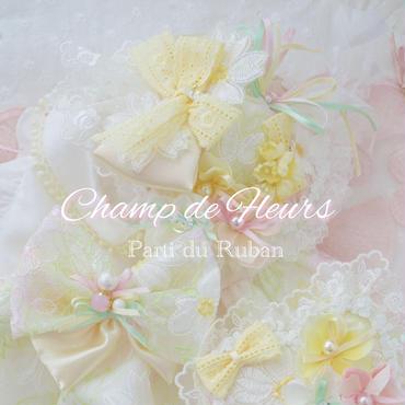 Champ de Fleurs  Photo Stage