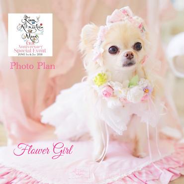 6th anniversary Photo  Plan