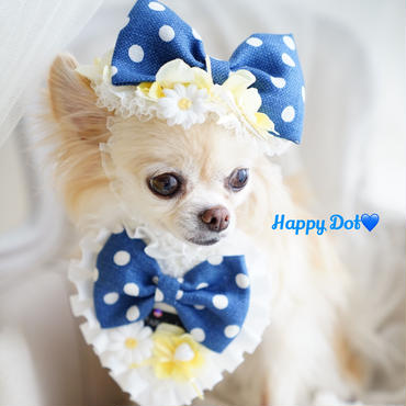 Happy Dot