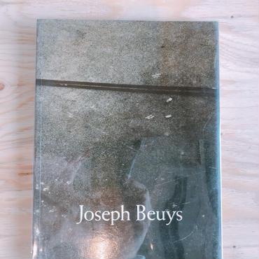 JOSEPH BEUYS    CAROLINE TISDALL