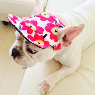 犬の帽子 A【リバーシブルタイプ】小型犬から中型犬用