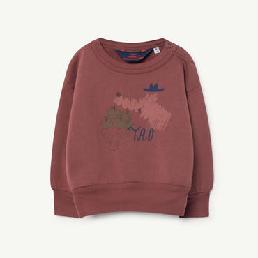 the animals observatory    bear babies  aweatshirt