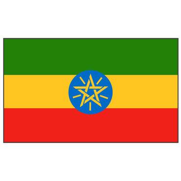エチオピア500g 浅深煎り