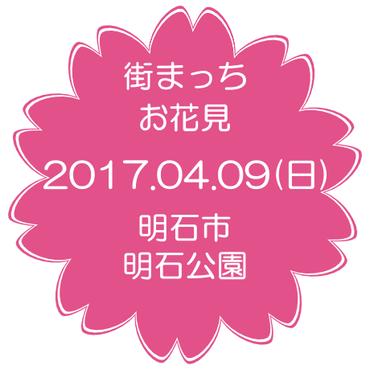 2017.04.09(日) 街まっち お花見ピクニック@明石市 明石公園 桜を見ながら婚活恋活しましょ。