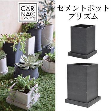 新色ブラック! 多肉植物やパキポディウムなどの塊根植物に セメントポットプリズムブラック Sサイズ おしゃれな鉢