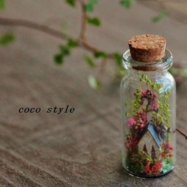 ボトルの中の小さな森