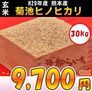 【玄米】H29年産 熊本産 菊池ヒノヒカリ 30kg