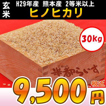 【玄米】H29年産 熊本産 ヒノヒカリ 2等米以上 30kg