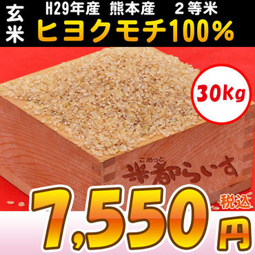 【もち米】H29年産 熊本産(玄米)ヒヨクモチ100% 2等米 30kg