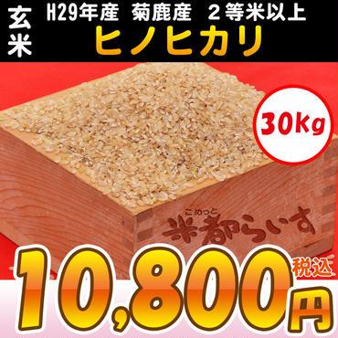 【玄米】H29年産 菊鹿産 ヒノヒカリ 2等米以上 30kg