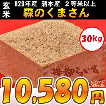 【玄米】H29年産 熊本産 森のくまさん 2等米以上 30kg