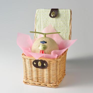 【バスケット入り】静岡マスクメロン・1個入り