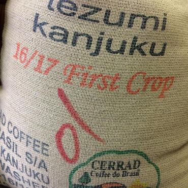 [送料無料]2016 一番摘み ニュークロップ 手摘み完熟豆 300g ¥1380 ご注文後に焙煎いたします