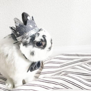 Birthday ★ Crown グレー