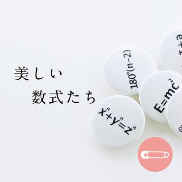美しい数式【31mm】種類あり_缶バッジ