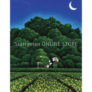 【デジタル版画/B5アクリル】「星を見つけてください」