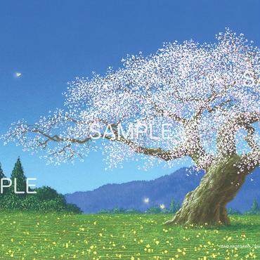 【壁紙/PC版】「日本の四季の輝き〜春〜」