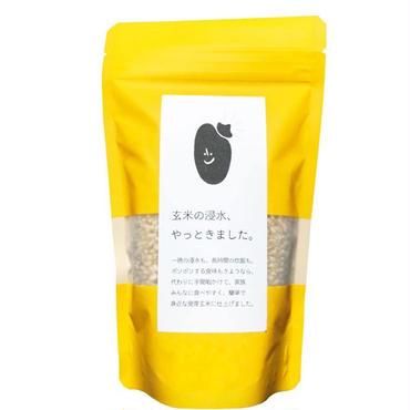 熊本ヒノデ米【発芽玄米】2合